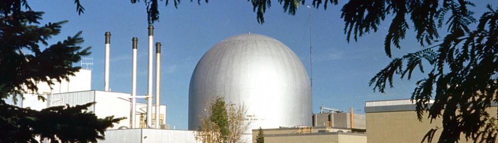 Nuklearia